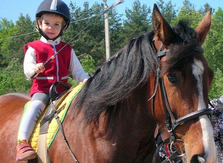 Лечение лошадьми «Иппотерапия» фото