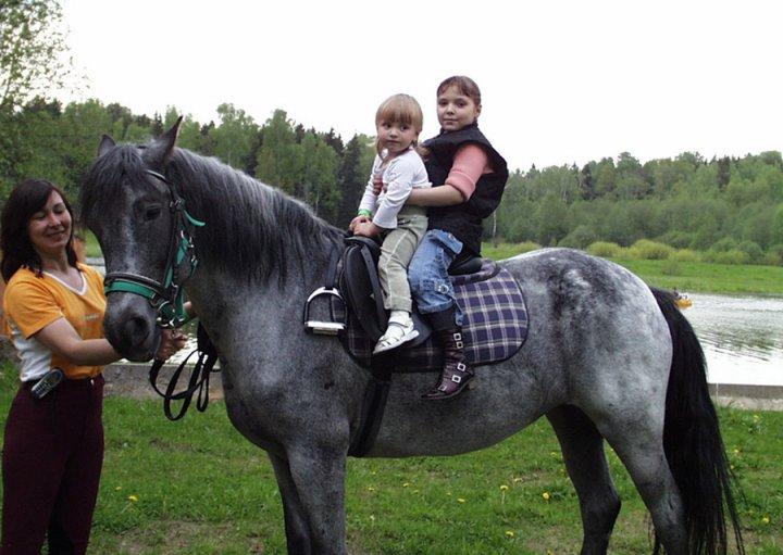 Лечение лошадьми «Иппотерапия» картинки